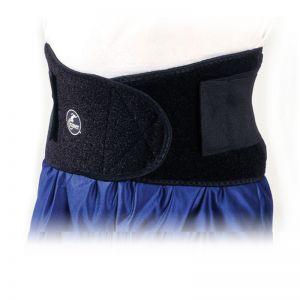 Soporte para espalda Back Support Cramer